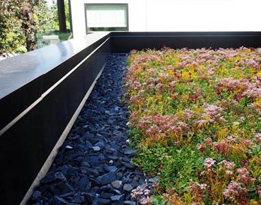 KROV, Zeleni krovovi