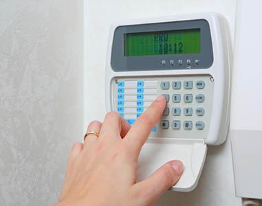 LEPOSAVA DOMANOVIĆ PR SAMOSTALNA ZANATSKA RADNJA EL-SIK LUČANI-VAROŠICA, Alarmni sistemi