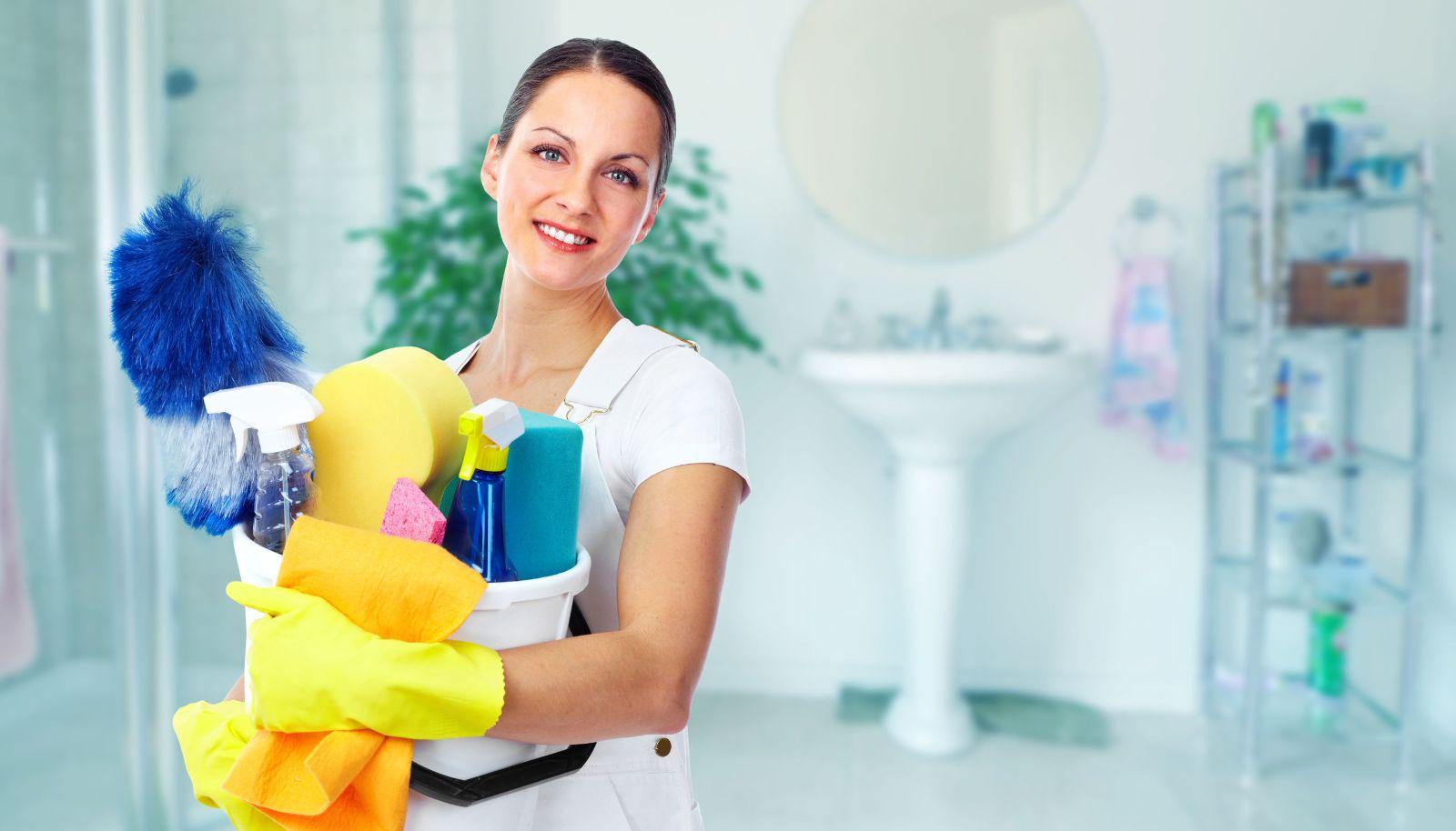 Servisi/agencije za čišćenje i održavanje